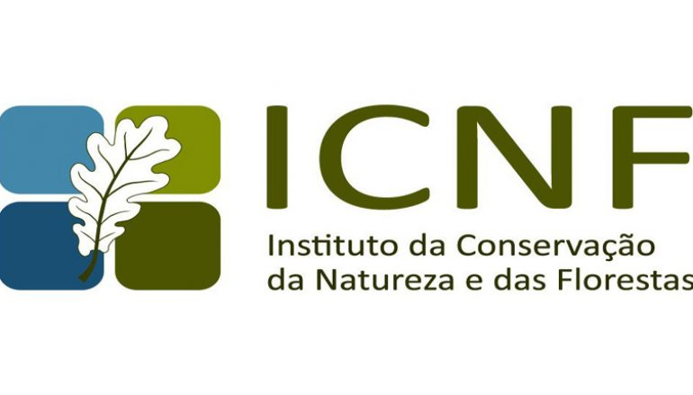 Ambientalistas contra lei orgânica do ICNF