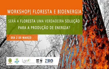 ZERO promove workshop sobre florestas e bioenergia